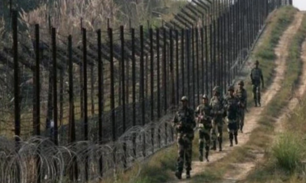 Pakistan Army Regularly Violating Ceasefire Since Scrapping of Article 370